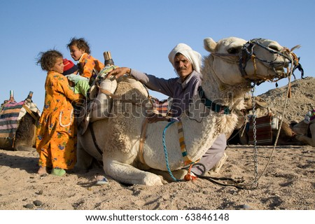 HURGHADA, EGYPT - JUNE 6: We take a closer look at the camels in Sahara Desert, Egypt, on June 6, 2008. Here beduins wait for tourists to take a camel ride so that they can earn money for families. - stock photo