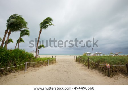 Hurricane Matthew and tropical storm. Miami Beach, South Beach, Florida. Incline weather, rain and wind. Dunes on a beach