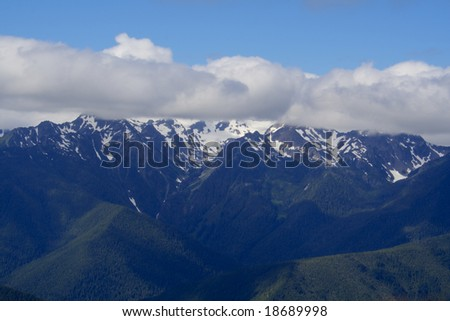 Hurricane Ridge in Olympic National Park in Summer - stock photo