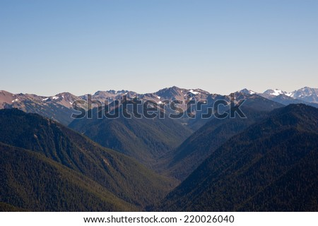 Hurricane Ridge in the Olympic National Park - stock photo