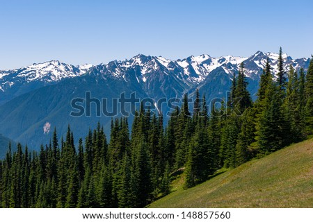 Hurricane Ridge of Olympic National Park in Washington, USA - stock photo