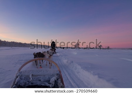 Husky sledge ride at sunset in winter wonderland (Lapland) - stock photo