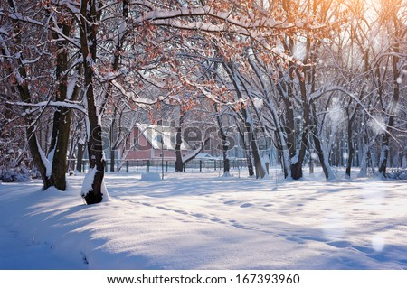 Hut in winter forest in a frosty sunny day - stock photo