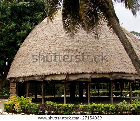 hut thatched roof palm tree