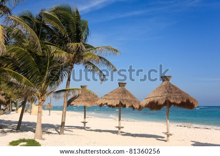 Huts and palm trees on a beach in the Riviera Maya in Mexico - stock photo