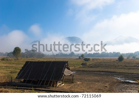 Huts and rice fields.