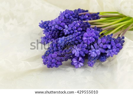 Hyacinth flowers bouquet on a soft silk textile