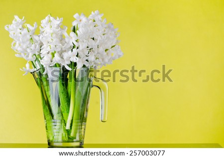 hyacinth flowers in carafe on yellow background