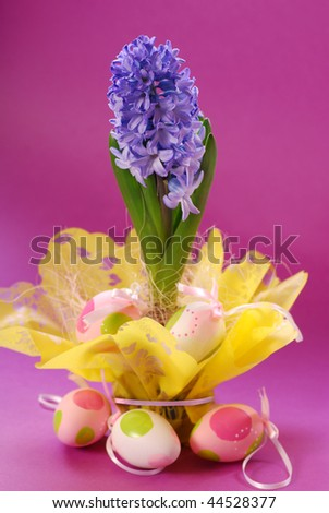 hyacinth in easter decoration