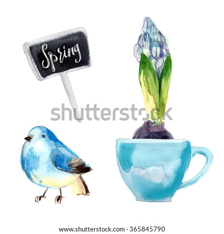Hyacinth painted with watercolors on white background. Spring. Easter decor. - stock photo