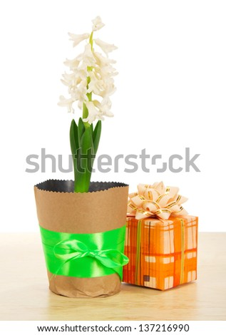 Hyacinth with a gift box on a table, isolated on white