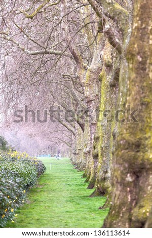 Hyde's park in London - stock photo