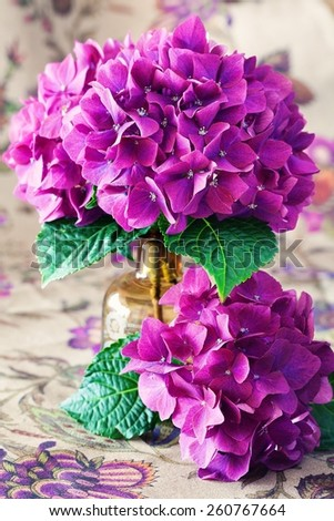 hydrangea flowers in a vase on a table . - stock photo