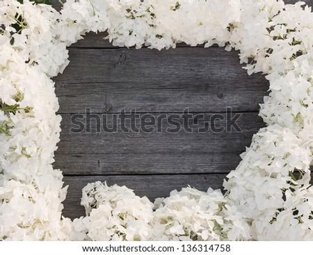 hydrangea on wooden background - stock photo