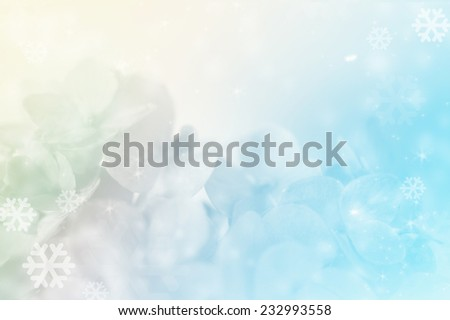 hydrangeas and snow in soft color style for christmas background