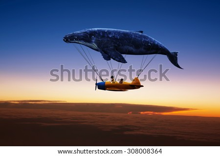 i belive i can fly , silhouette - stock photo