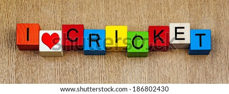 I Love Cricket, sign for sport and cricket fans, in panoramic, with heart symbol. - stock photo