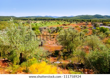 Ibiza island landscape with agriculture fields on red clay soil - stock photo