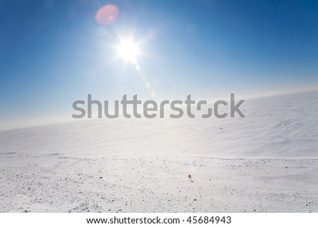Ice cold desert sun and winter's day - stock photo