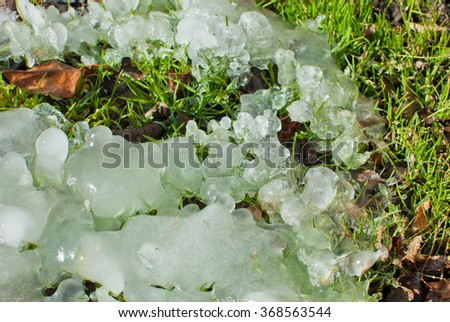 ice covering green grass in winter