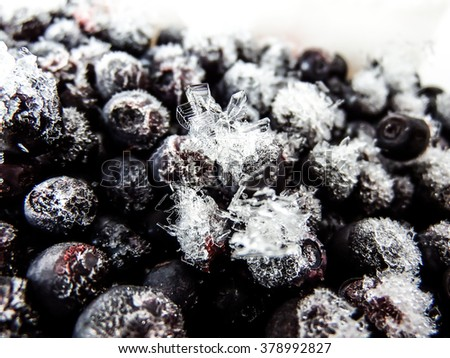 Ice crystals on Frozen bilberries on white background