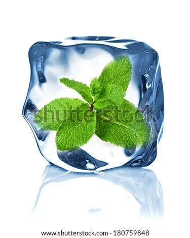 ice cube isolated and mint - stock photo