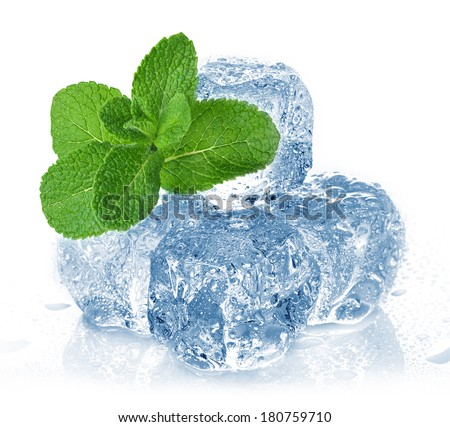 ice cubes and mint - stock photo