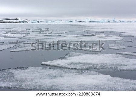 Ice Floes in Antarctica.