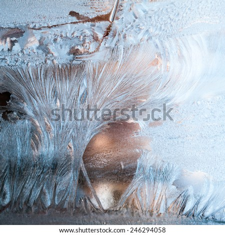 Ice flowers on glass - texture and background - stock photo