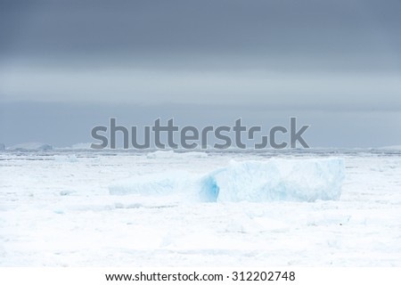 Ice on the surface of the ocean in Antarctica