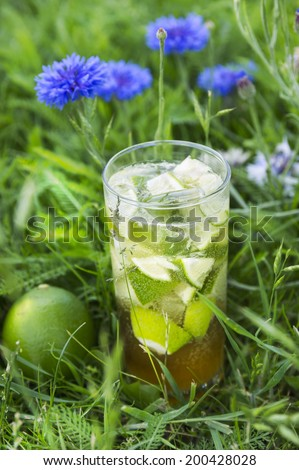 ice tea in garden flowers - stock photo