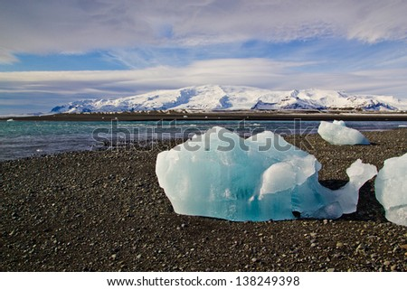 Iceberg in the shape of whale on the beach in Iceland