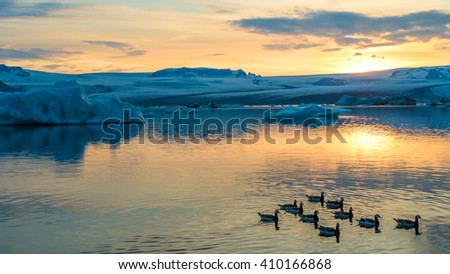 Icebergs and water birds floating in Jokulsarlon glacier lake at sunset. South Iceland.