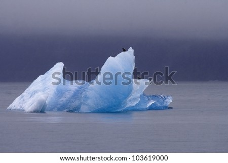 Icebergs from the North Sawyer Glacier in the Tracy Arm in Alaska - stock photo