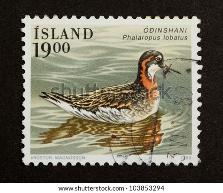 ICELAND - 1989: Stamp printed in Iceland shows a red-necked phalarope, 1989