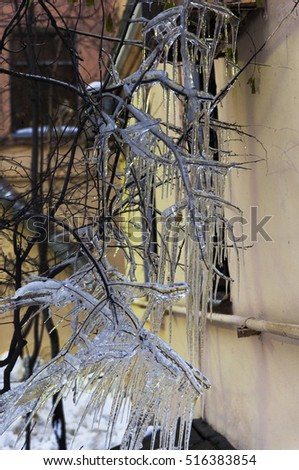 icicles, branches and the wall
