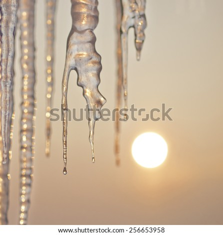 Icicles isolated - stock photo