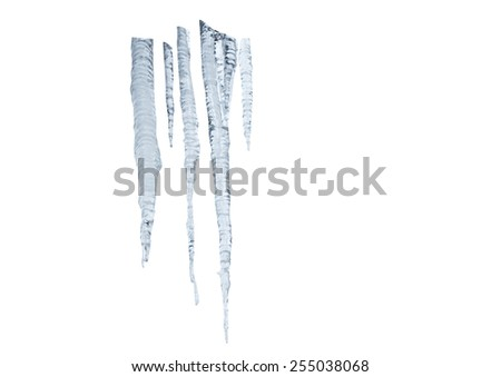 icicles on white - stock photo