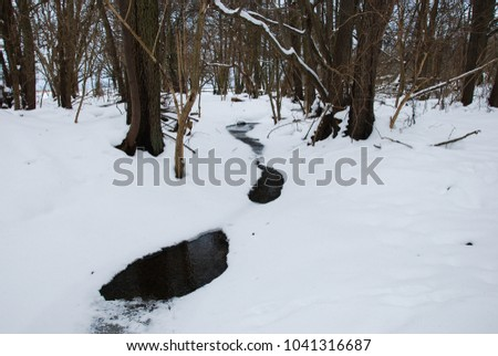 Icy and snow covered winding creek in a forest