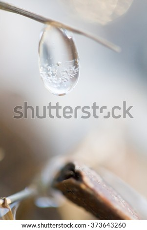 Icy water drop in nature - stock photo
