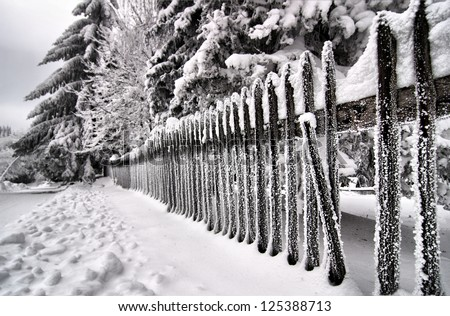 Icy wooden fence
