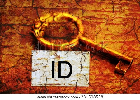 Id tag and old key - stock photo