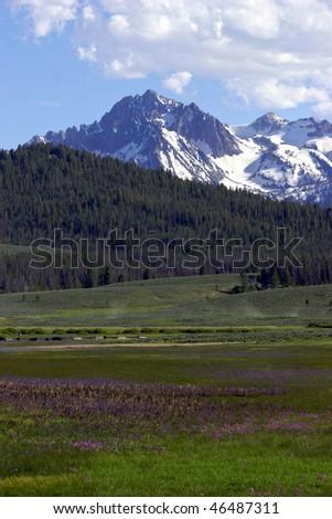 Idaho Valley - stock photo