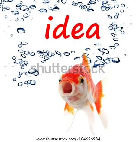 idea or creativity concept with goldfish and water bubbles on white