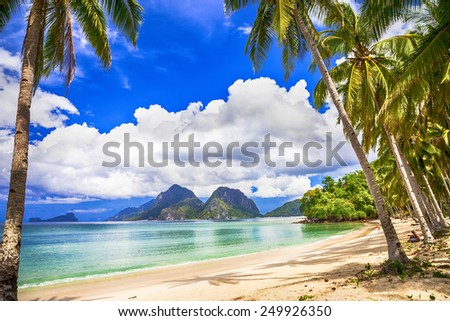 idilyc tropics - stock photo