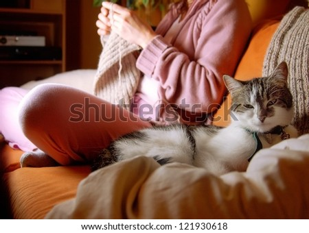 Idylic Scene in Living Room - stock photo