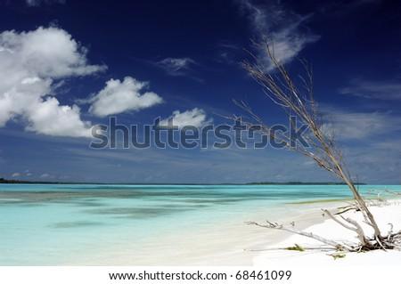 idyllic beach in New Caledonia - stock photo