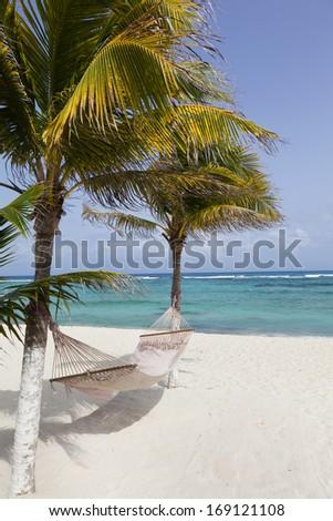 Idyllic beach with coconut trees and hammock at Mexico - stock photo