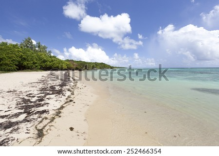 Idyllic coastal beach scenery on a caribbean island named Guadeloupe - stock photo