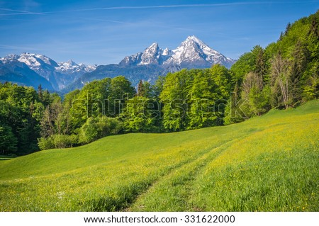 Idyllic landscape in the Alps with fresh green meadows, blooming flowers, farmhouses and snowcapped mountain tops in the background, Nationalpark Berchtesgadener Land, Bavaria, Germany - stock photo